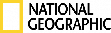 Принт Жіноча футболка National Geographic logo, Фото № 1 - FatLine