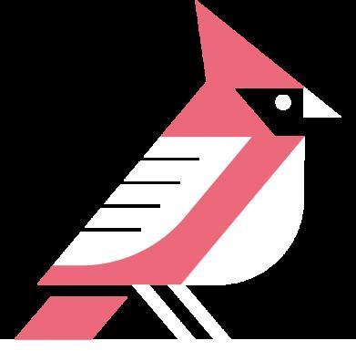 Принт Жіноча футболка Geometric Bird, Фото № 1 - FatLine
