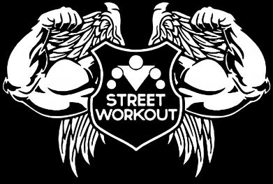 Принт Подушка Street Workout Крылья - FatLine
