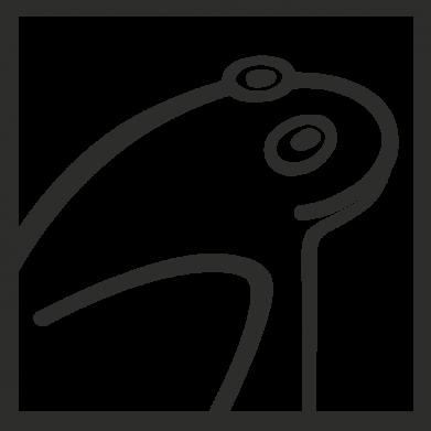 Принт Чоловіча футболка Frog squared, Фото № 1 - FatLine