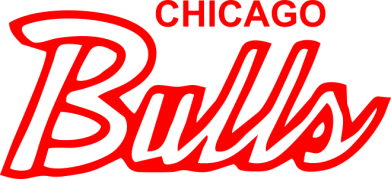 Принт Футболка Bulls from Chicago - FatLine