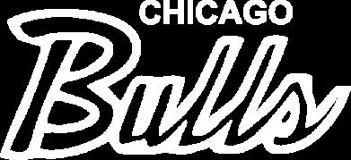 Принт Женская футболка с V-образным вырезом Bulls from Chicago - FatLine