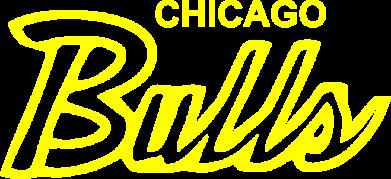 Принт Женская футболка Bulls from Chicago - FatLine