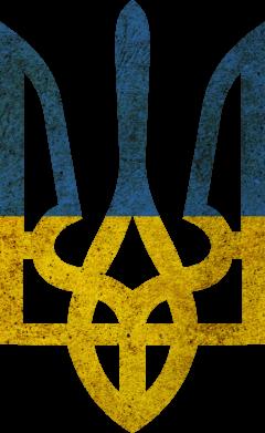 Принт Подушка Герб на фоні прапора - FatLine