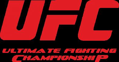 Принт Подушка UFC - FatLine