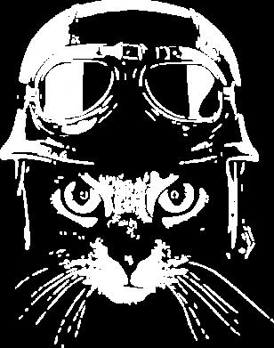 Принт Чоловіча футболка Cat in a helmet silhouette, Фото № 1 - FatLine