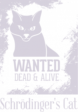 Принт Женская футболка Schrödinger's cat is wanted, Фото № 1 - FatLine