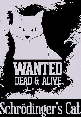 Принт Жіноча футболка Schrödinger's cat is wanted, Фото № 1 - FatLine