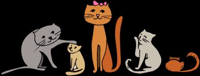 Принт Кепка Cat family, Фото № 1 - FatLine