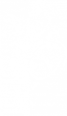 Принт Женская футболка Kitten and bike, Фото № 1 - FatLine