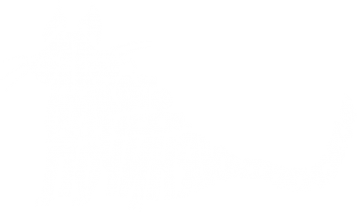 Принт Жіноча футболка Cat Begemot, Фото № 1 - FatLine