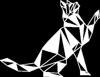 Принт Жіноча футболка Cat polygon, Фото № 1 - FatLine