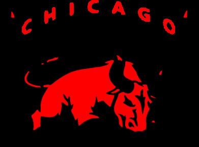 Принт Мужская футболка  с V-образным вырезом Чикаго Буллз - FatLine