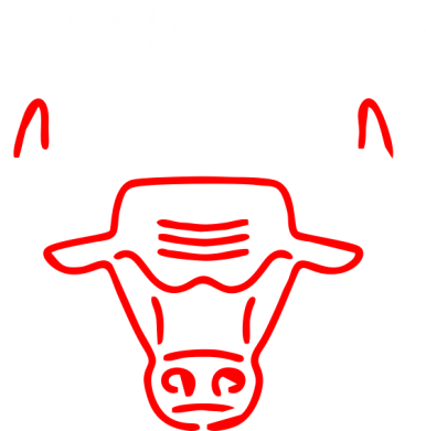 Принт Реглан Chicago Bulls Logo - FatLine
