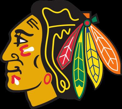 Принт Мужская толстовка на молнии Chicago Black Hawks - FatLine