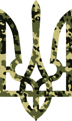 Принт Сумка Камуфляжный герб Украины - FatLine
