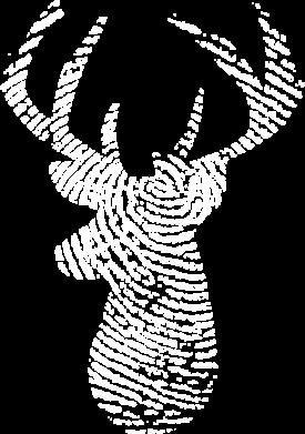 Принт Жіноча футболка Imprint of human skin in the form of a deer, Фото № 1 - FatLine