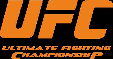 Принт Шапка UFC - FatLine