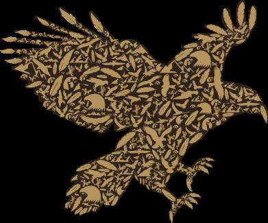 Принт Чехол для Samsung A6s Eagle feather, Фото № 1 - FatLine
