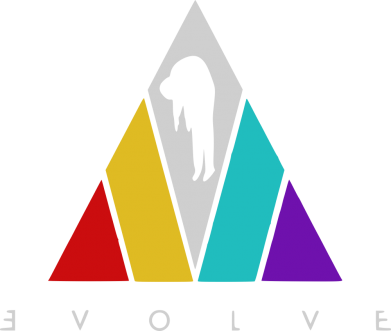 Принт Жіноча футболка Evolve logo, Фото № 1 - FatLine