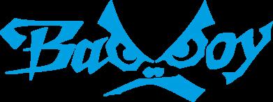 Принт Женская толстовка Bad Boy Logo - FatLine