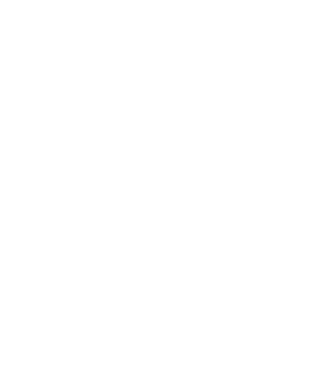 Принт Шапка Рыба - FatLine