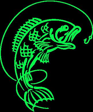 Принт Реглан (свитшот) Рыба - FatLine