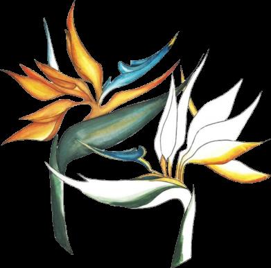 Принт Жіноча футболка Flowers art painting, Фото № 1 - FatLine