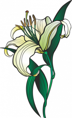 Принт Чоловіча футболка Lily flower, Фото № 1 - FatLine