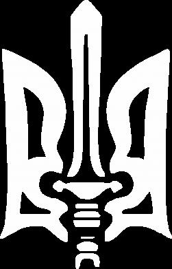 Принт Футболка с длинным рукавом Герб з мечем - FatLine