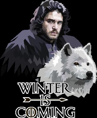 Принт Жіноча футболка Winter is coming I, Фото № 1 - FatLine
