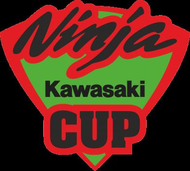 Принт Подушка Kawasaki Ninja Cup - FatLine