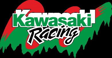 Принт Футболка Поло Kawasaki Racing - FatLine