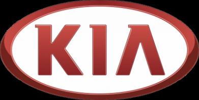 Принт кепка KIA 3D Logo - FatLine