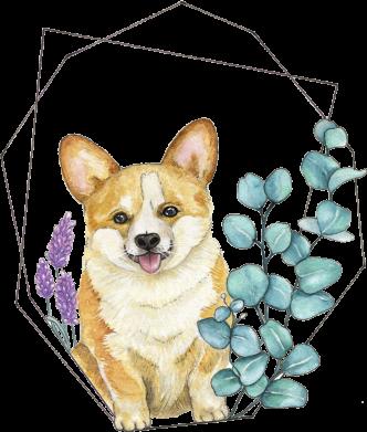 Принт Женская футболка Corgi and flowers, Фото № 1 - FatLine