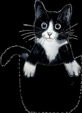 Принт Женская футболка Art cat in your pocket, Фото № 1 - FatLine