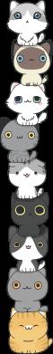 Принт Женская футболка Cat breeds, Фото № 1 - FatLine