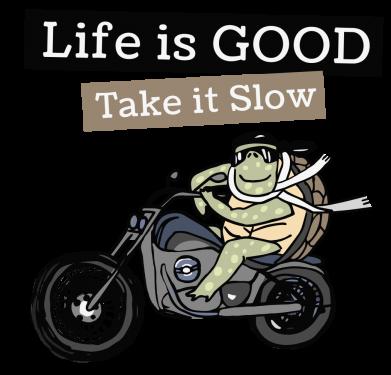 Принт Жіноча футболка Life is good, take it show, Фото № 1 - FatLine
