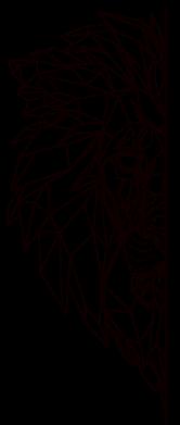 Принт Жіноча футболка Low poly lion head, Фото № 1 - FatLine