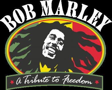 Принт Мужская толстовка на молнии Bob Marley A Tribute To Freedom - FatLine