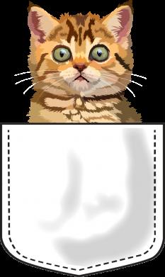 Принт Мужская толстовка Cat in your pocket, Фото № 1 - FatLine