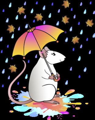Принт Чоловіча футболка Mouse and rain, Фото № 1 - FatLine