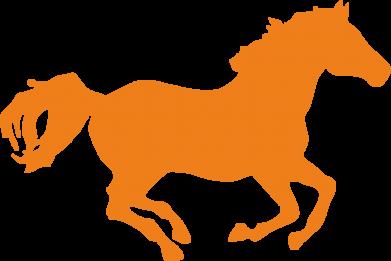 Принт Реглан (свитшот) Лошадка - FatLine