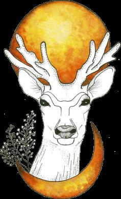 Принт Женская футболка Deer and moon, Фото № 1 - FatLine