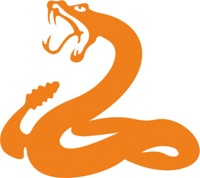 Принт Фляга Змія - FatLine