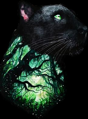 Принт Жіноча футболка Panther and Forest, Фото № 1 - FatLine