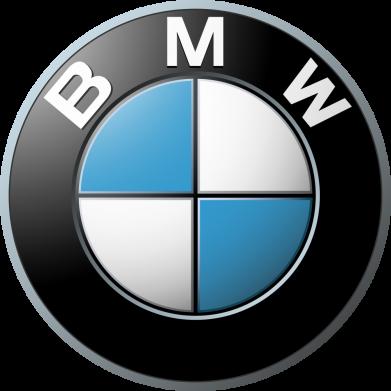Принт Мужская толстовка BMW Logo 3D, Фото № 1 - FatLine