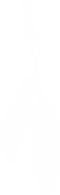Принт Мужская толстовка Перо, Фото № 1 - FatLine