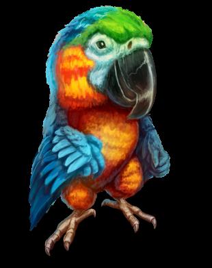 Принт Жіноча футболка Bright parrot art, Фото № 1 - FatLine