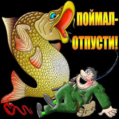 Принт Жіноча футболка Зловив - Відпусти, Фото № 1 - FatLine
